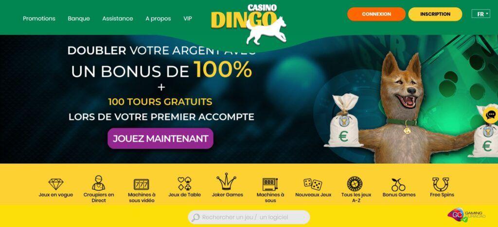 bonus de bienvenue dingo