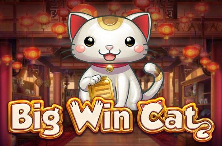 bing win cat logo