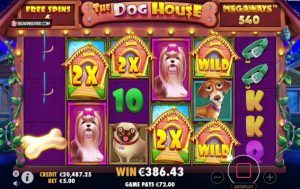 the dog house interface